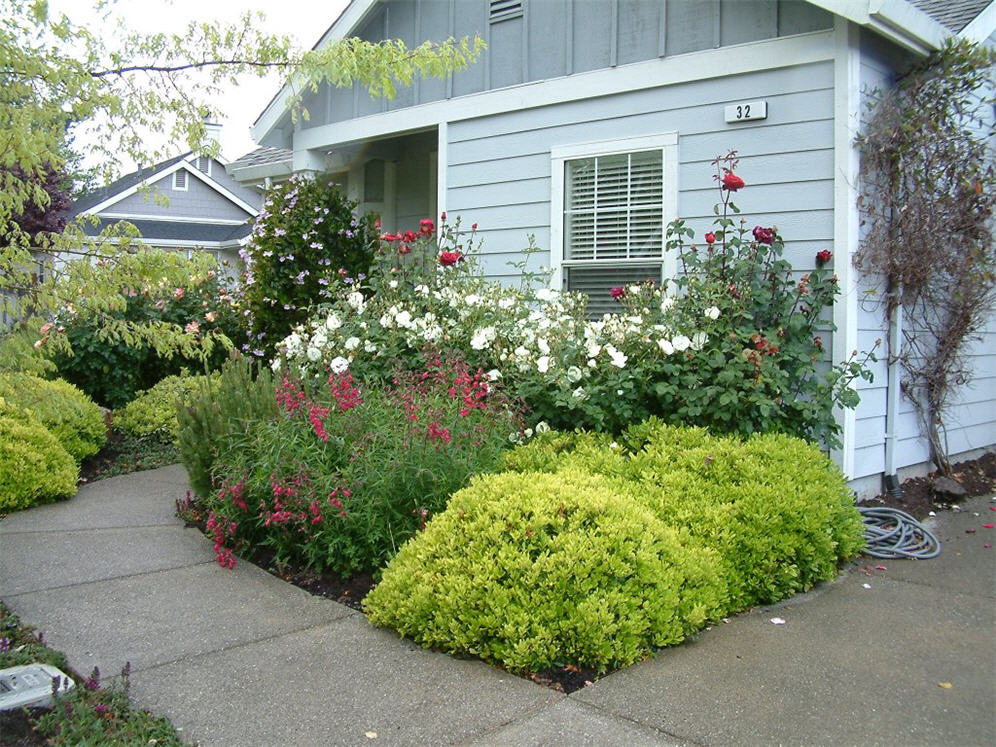 Flowerful townhouse front yard for Townhouse landscaping ideas for front yard