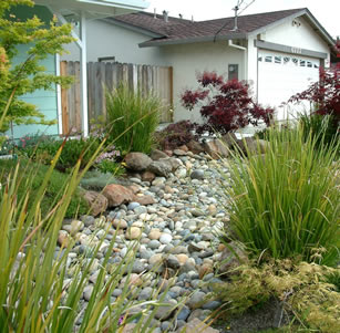 Dry Creek Bed Garden