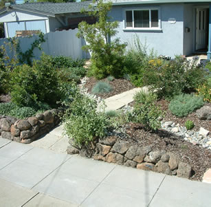 Livermore Native Garden